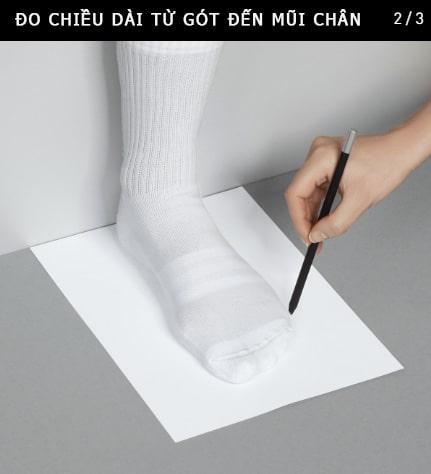 tìm size giày bước 2