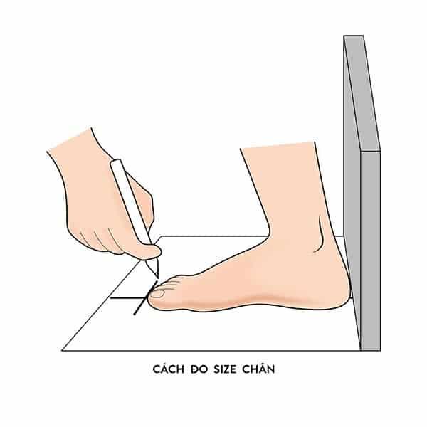 cách đo size giày converse